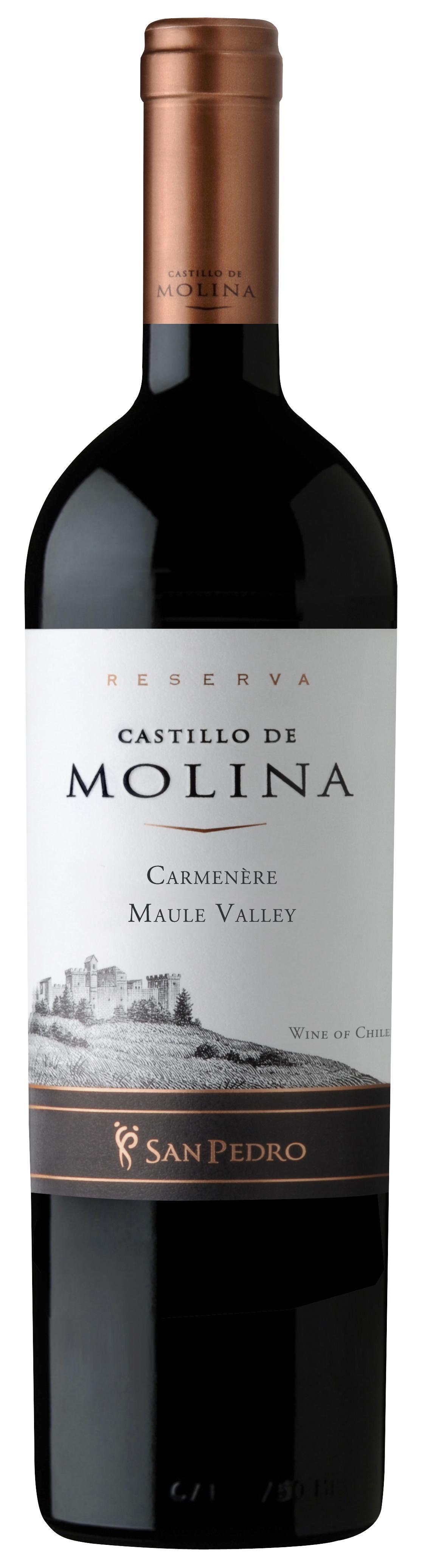 Castillo de Molina Carmenère Reserva