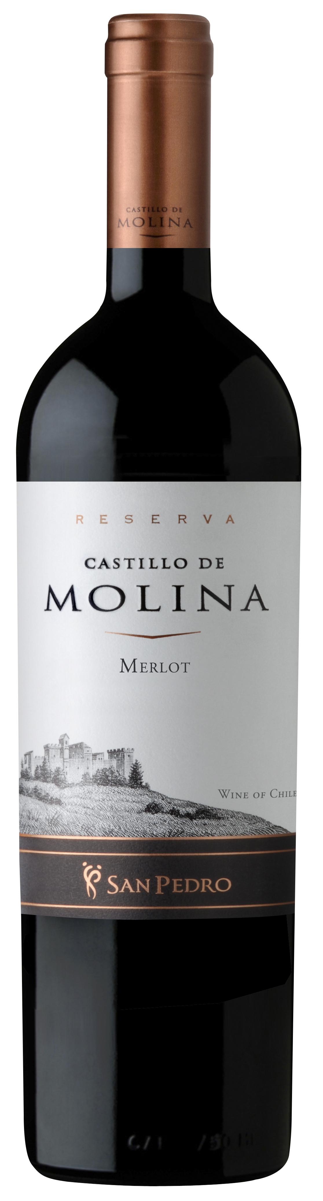 Castillo de Molina Merlot Reserva