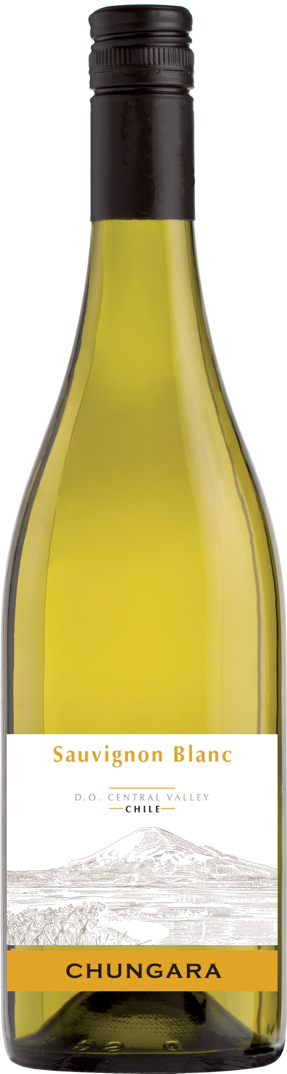 Chungara Sauvignon Blanc