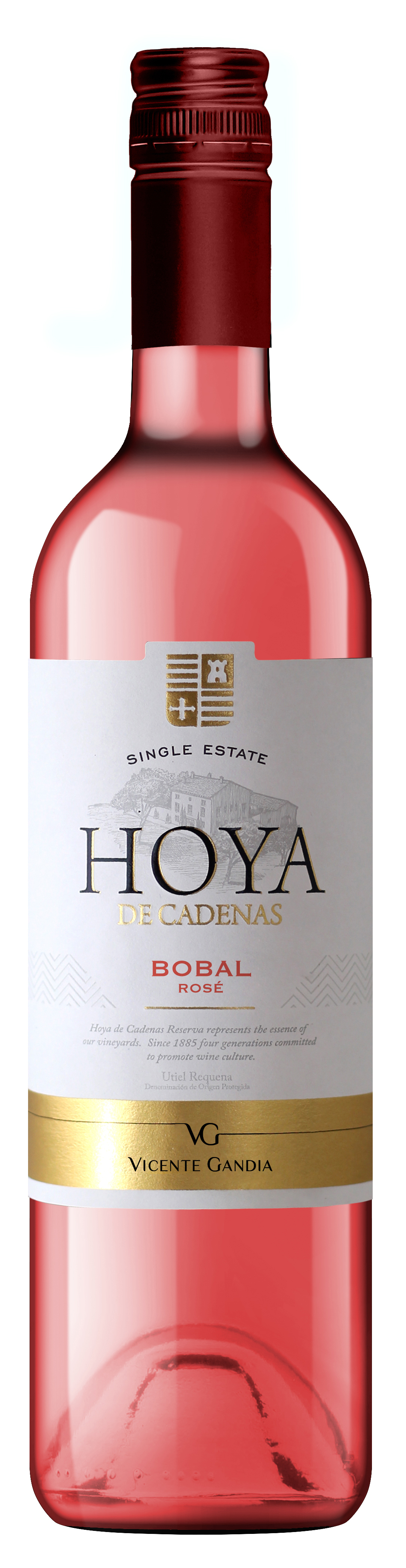 Hoya de Cadenas Rosado