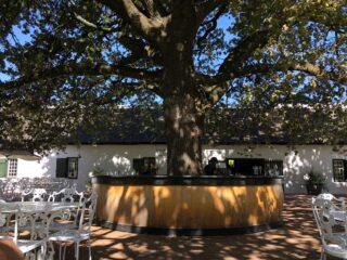 Boschendal Bar