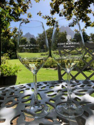 Boschendal wijnen drinken in de rozentuin